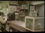 Monty Python - Papagaio